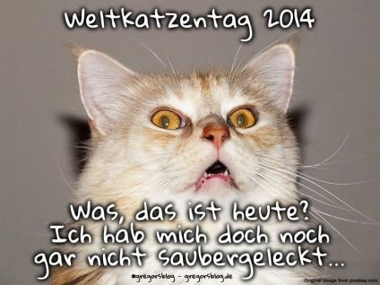 Foto einer Katze mit vermeintlich erschrockenem Gesichtsausdruck. Darauf steht: Weltkatzentag 2014. Was, das ist heute? Ich hab mich doch noch gar nicht saubergeleckt...