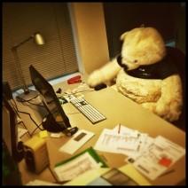 Ein großer Teddy sitzt an einem Büroarbeitsplatz und wurde so in Szene gesetzt, als würde er tatsächlich die Maus bedienen und arbeiten.