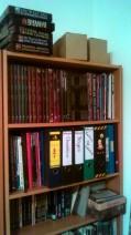 Foto vom Regal mit den ganzen Büchern und anderen Utensilien rund ums Rollenspiel