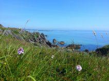 Naturfoto mit Blick aufs Wasser an einer felsigen Küste Schottlands