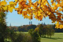 Foto: Blick aus dem Englischen Garten durch herbstlich gefärbte Blätter auf die weit entfernt scheinende Stadt