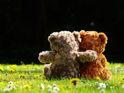 Foto: Zwei Teddys auf einer Wiese von hinten zu sehen. Der eine legt den Arm um den anderen.